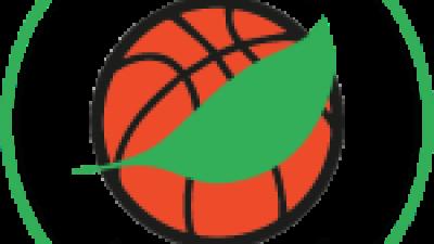 Noisiel basket Appel aux Dons